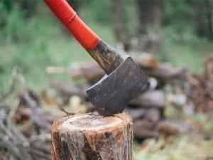 wood splitter axe, wood logs, axe in wood, hatchet, forest