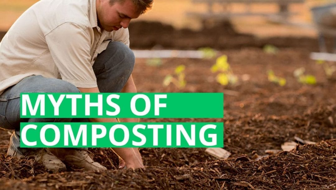 myths of composting, composting myths, gardening