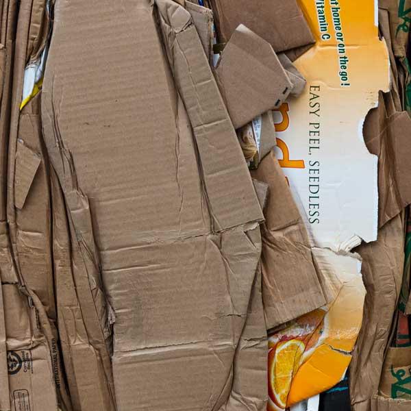 shredded cardboard, add to compost