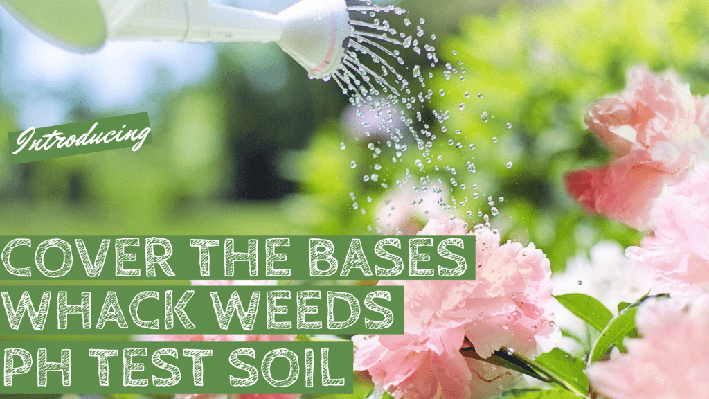 flowers, water, mulch, weeds, garden, nature, organic, organic garden